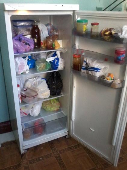 Холодильник камера Снайге